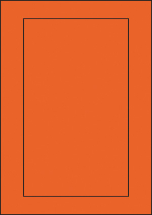 ENDI-HAFT Etiketten, 145x245 mm, leucht-orange