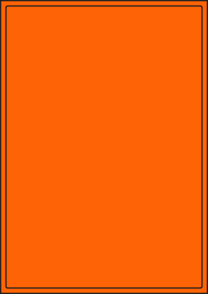ENDI-HAFT Etiketten, 198x285 mm, leucht-orange