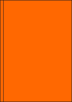 ENDI-HAFT Etiketten, 200x297 mm, leucht-orange